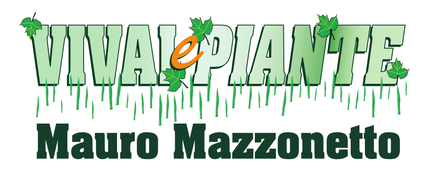 Mazzonetto Vivai